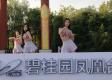 碧桂园凤凰台宣传活动