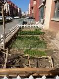 世纪花园三期一楼带小院